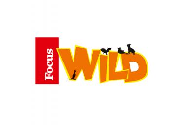 Logo Focus Wild Immagine concessa con licenza CC BY-SA 4.0