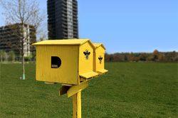 L'apiario urbano di Donna Moderna installato a Milano per la Giornata della Terra 2021.